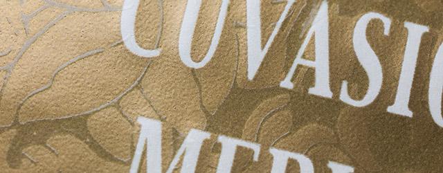Tactile label varnishes