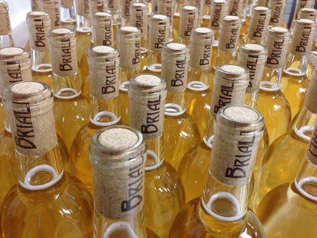 Pinot Grigio biodynamic wine from Briali